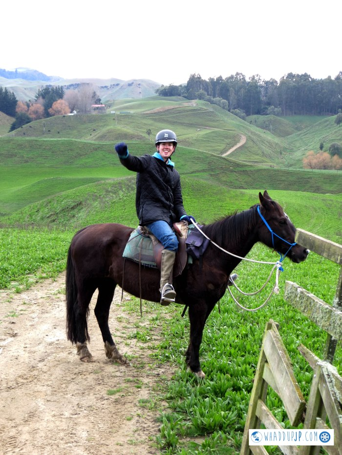 River Valley horse-riding