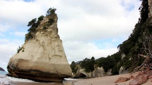 The Beach at Cathedral Cove