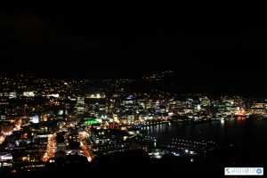 Wellington from Mount Victoria