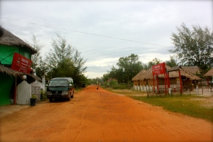 Rural Cambodian view