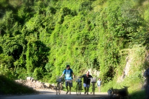 Cycling with goats on Cat Ba island!