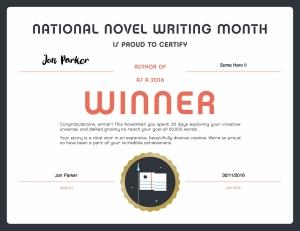 nano-winner-certificate-2016